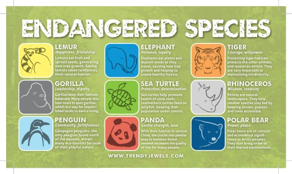 The header for the display, listing the endagered species and their icon designs (which are also on the bracelets). I included facts about the animals and color-coordinated the icons with the bracelets.